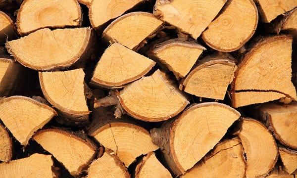Brennholz und Kaminholz günstig kaufen in Dresden